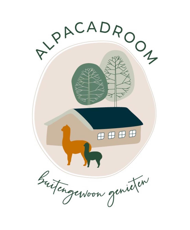 Een luxe verblijf tussen de alpaca's